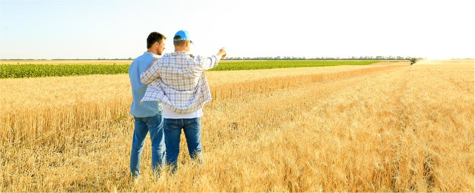 agricoltura-canciani-assicurazioni-responsabilità-civile-verso-terzi-e-addetti